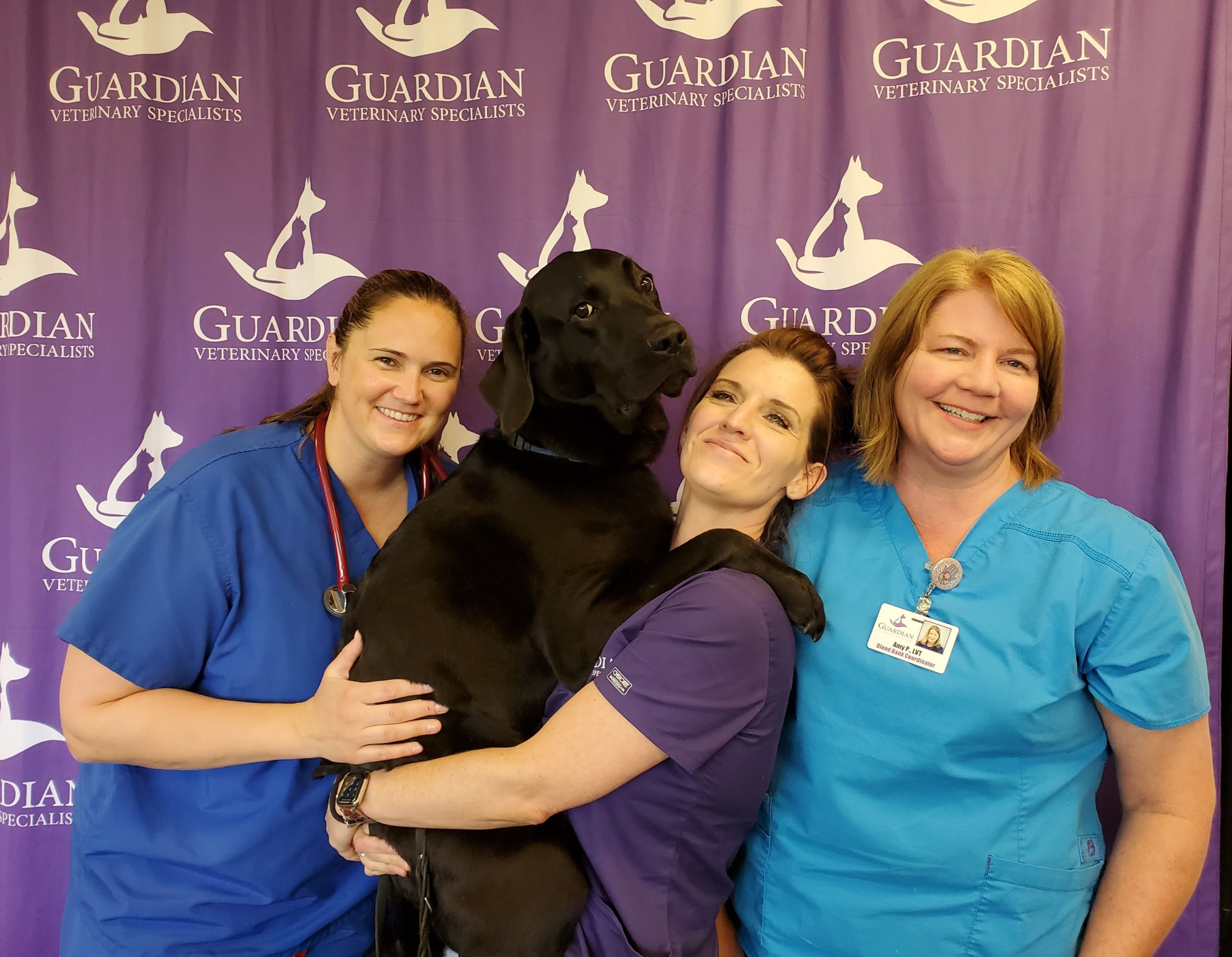 three women veterinary technicians wearing scrubs standing in front of a purple backdrop with Guardian logo, one woman holding large black dog
